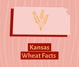 Kansas Wheat Facts