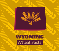 Wyoming Wheat Facts
